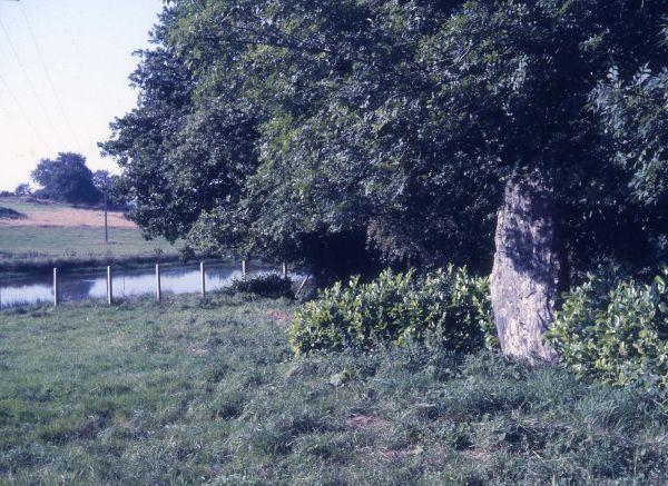 Menhir du Bourg, Saint-Mayeux