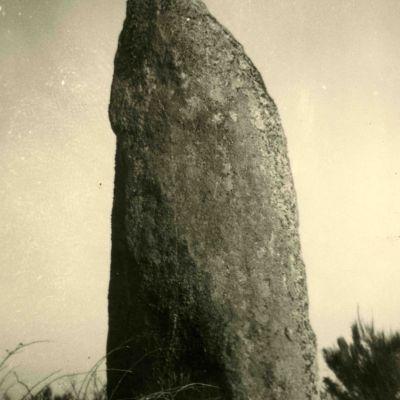 Menhir de Kergornec, Saint-Gilles-Pligeaux