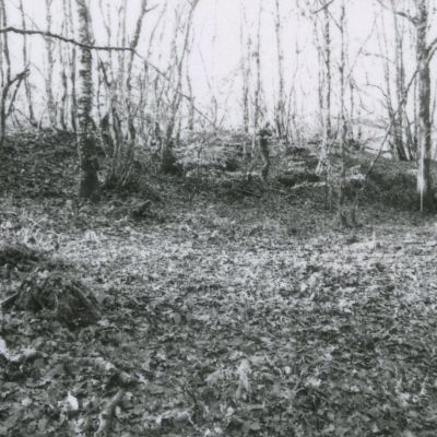 Eperon barré du bois de Kerbescont