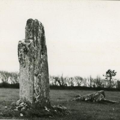 Menhir de Trimin