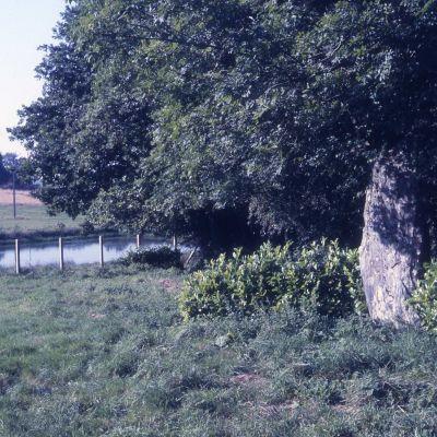 Menhir du Bourg