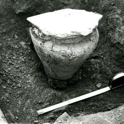 Landeleau, Penfoul. Urne funéraire en cours de fouille. Cliché J. Briard